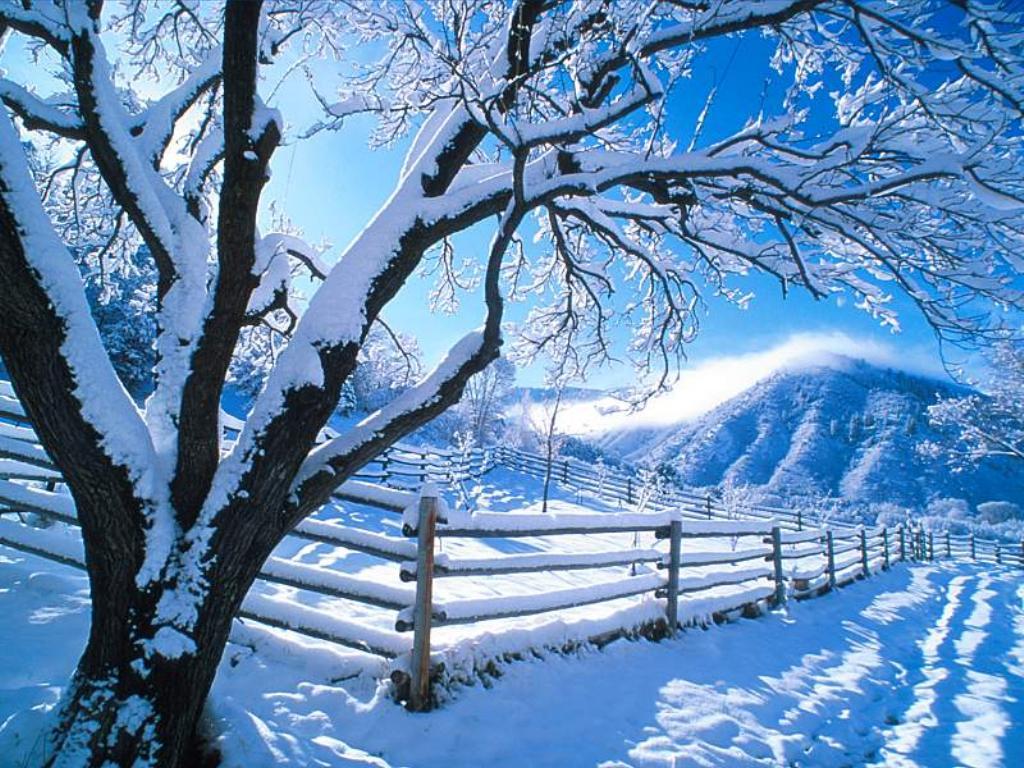 Fond D'écran De Paysages D'hiver Gratuit. paysages d hiver
